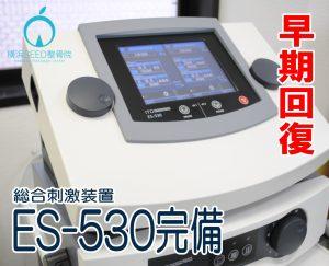 早期回復:ES-530